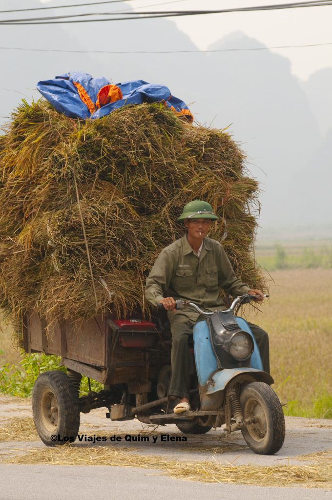 Campesino un poco cargado en Tam Coc