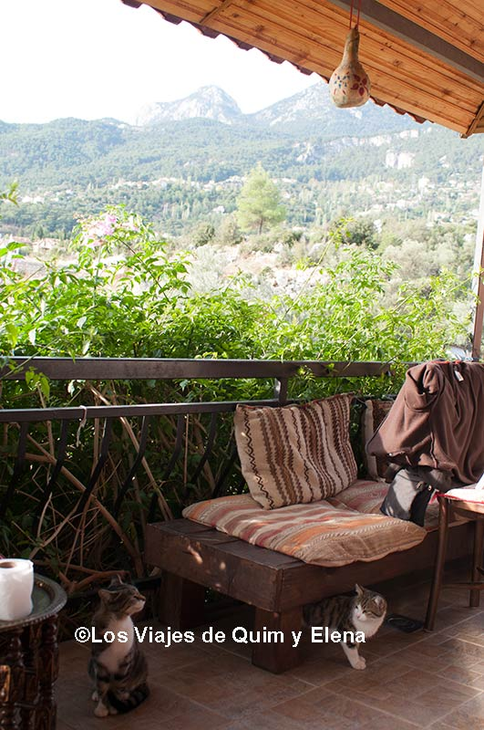 vistas desde la Ecofarm