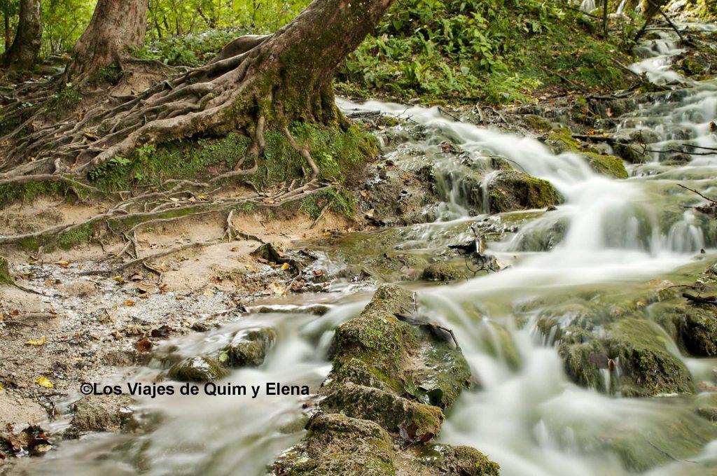 El agua fluye por todas partes