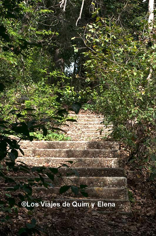 Escaleras abandonadas