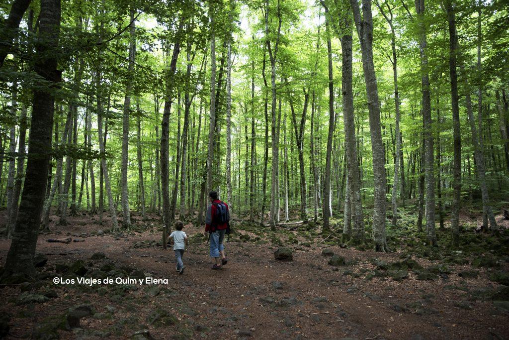 Éric y Quim por el bosque