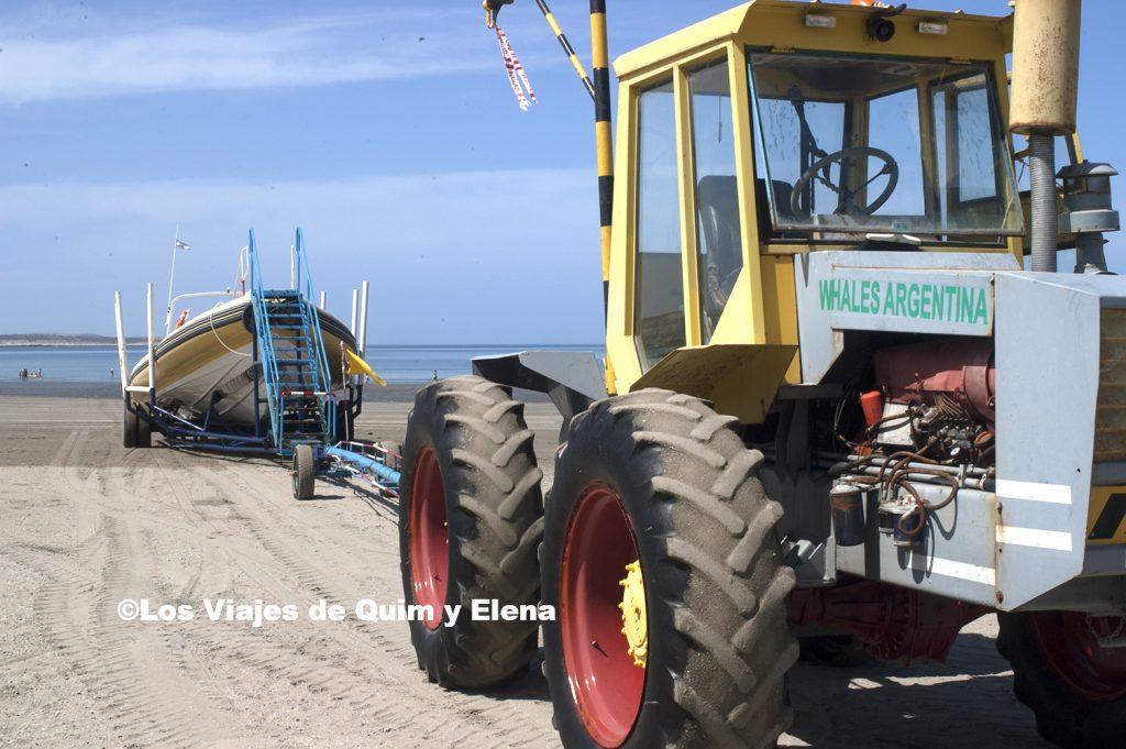 Remolcando la barca del avistamiento de las ballenas