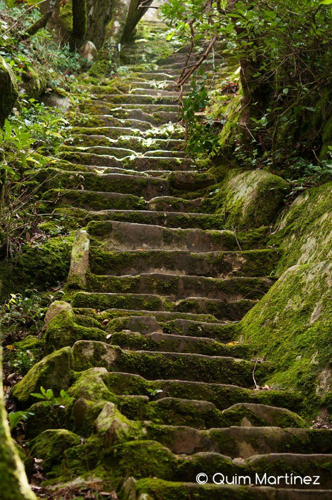 Subida al alto de Santa Catarina