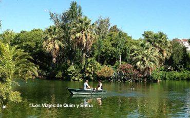 La exuberante vegetación del lago