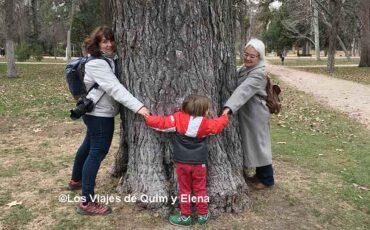 Abrazando un árbol en el Retiro
